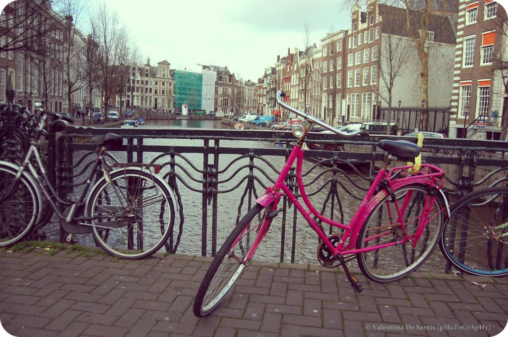 The pink bike, Amsterdam