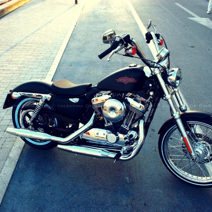 Harley Davidson: 110th Anniversary at Lido di Ostia