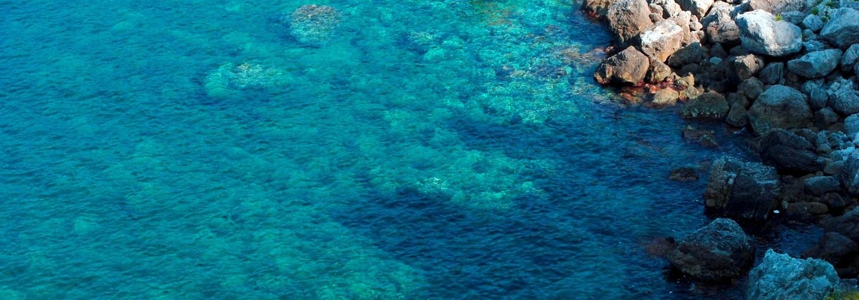 Scilla, the sea