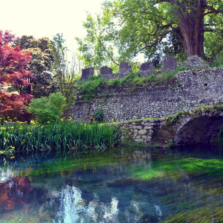 The Gardens of Ninfa: love at first sight (part III)