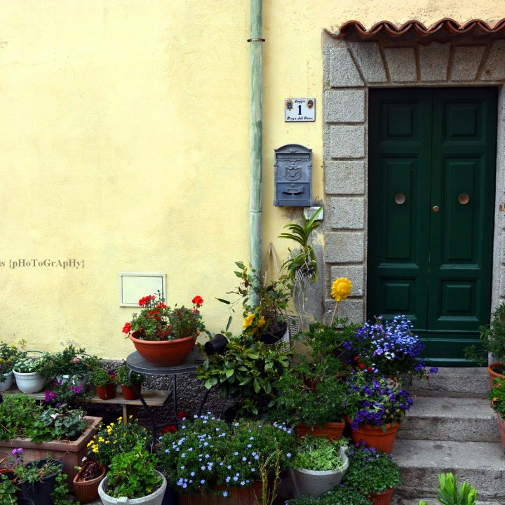 Island of Elba: discovering Poggio