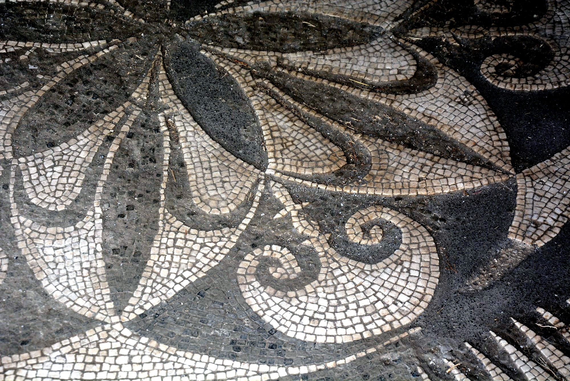 mosaics in pompeii A mosaic from the roman town of pompeii, buried by the eruption of mt vesuvius in 79 ce such fine mosaics were a common feature of floors in the villas of the town.
