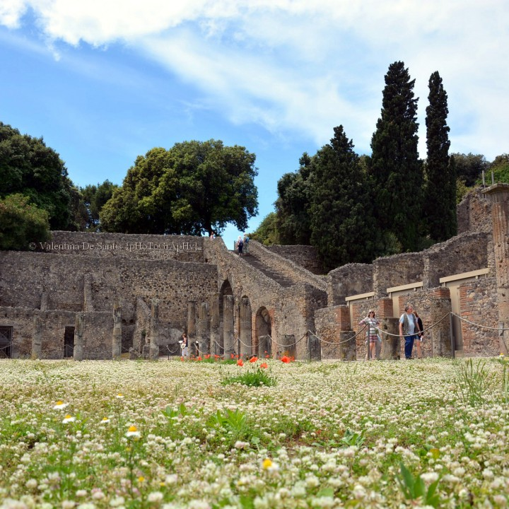 Pompeii, the tour continues...