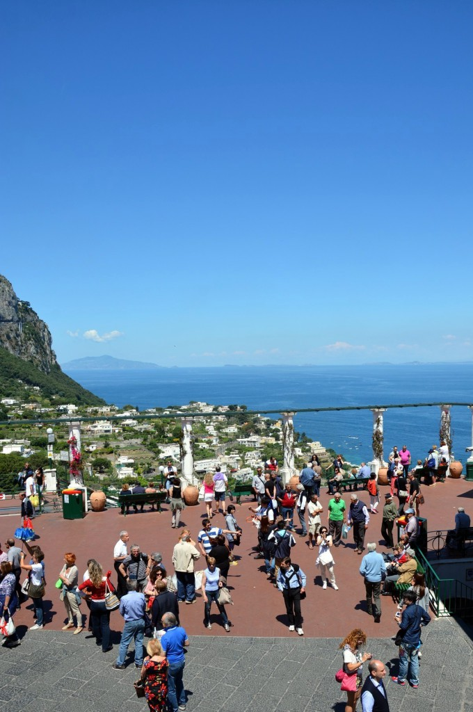 The living world of Capri