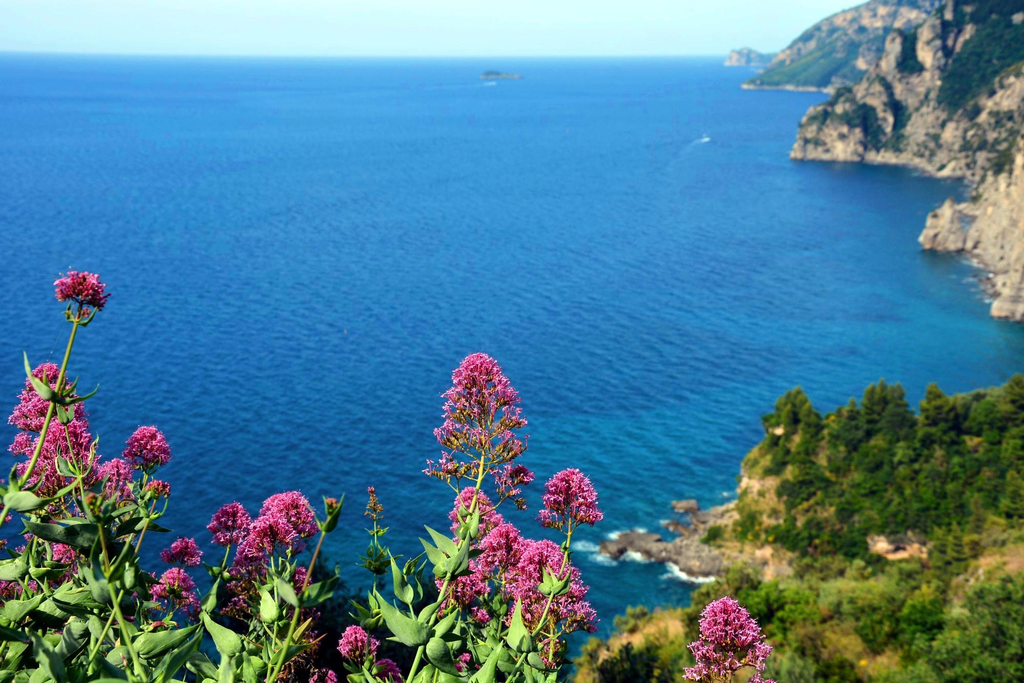 the Sorrento coast