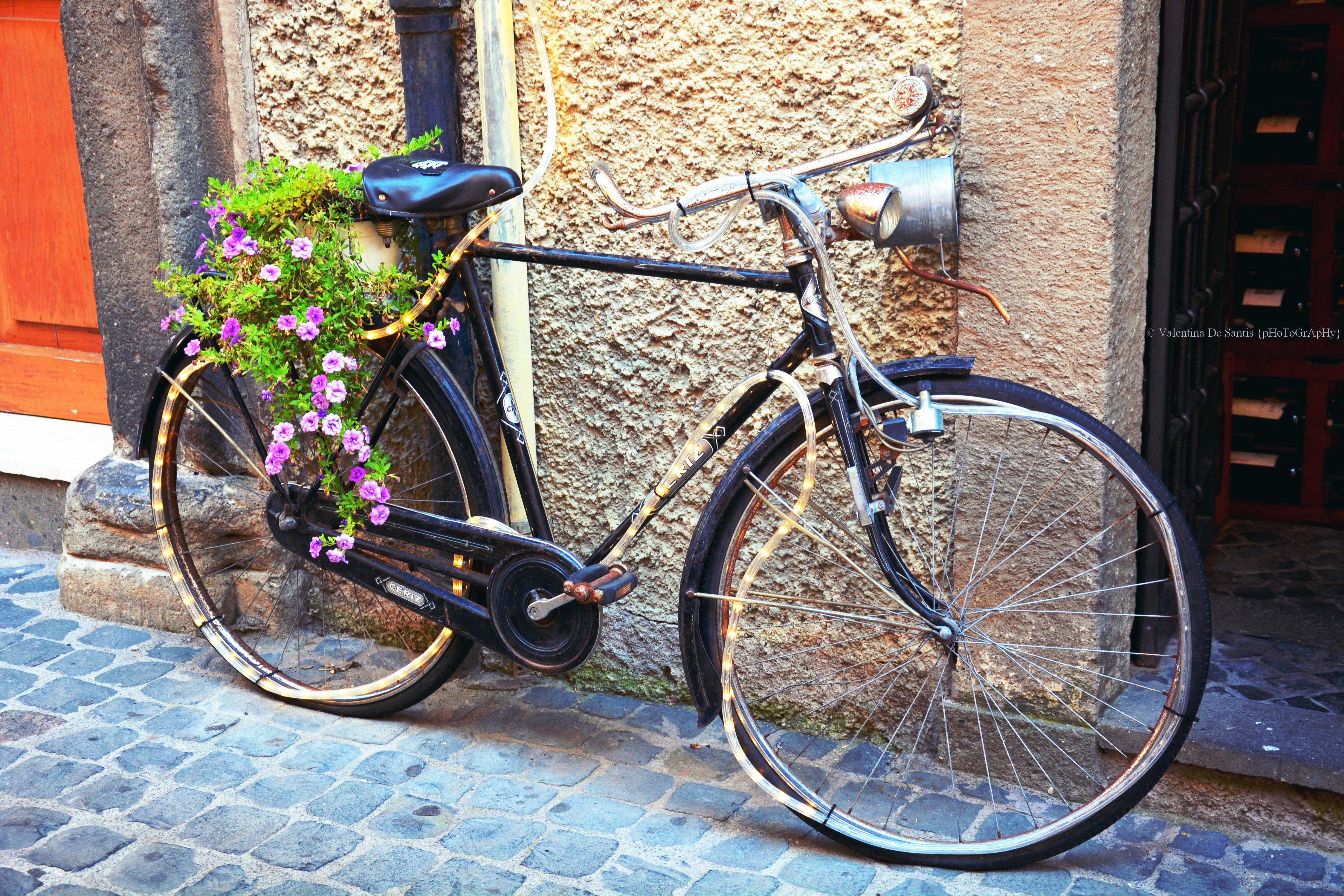 unusual bike, Castel Gandolfo