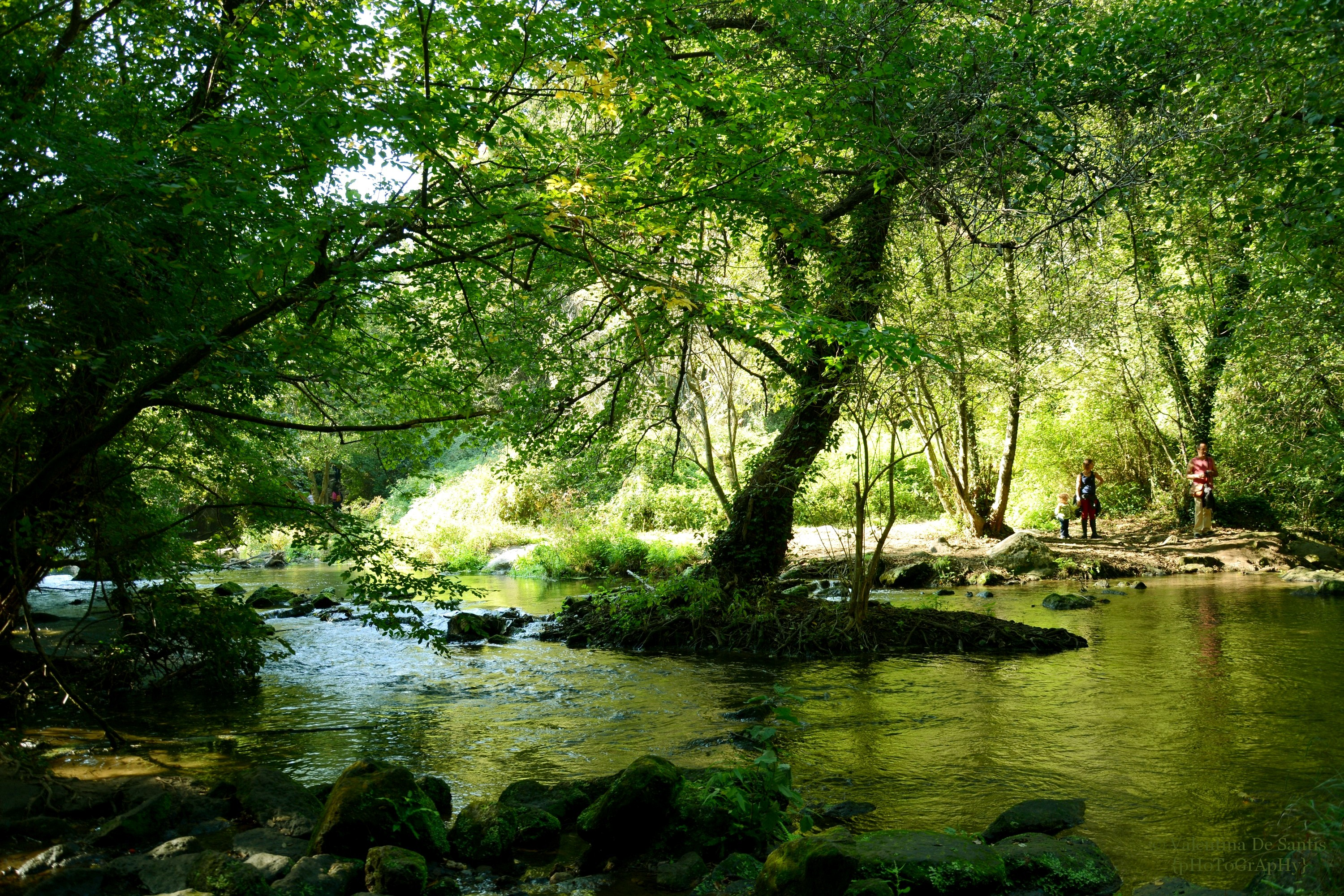 The Natural Park Valley of Treja
