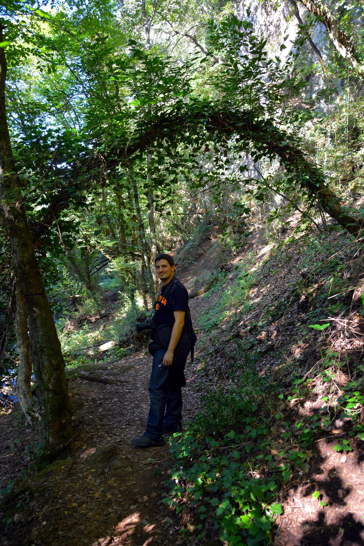 Valley of Treja, Juicy