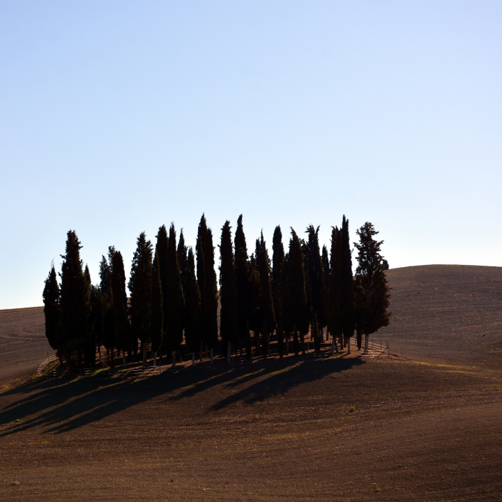 Renaissance in the Val d'Orcia