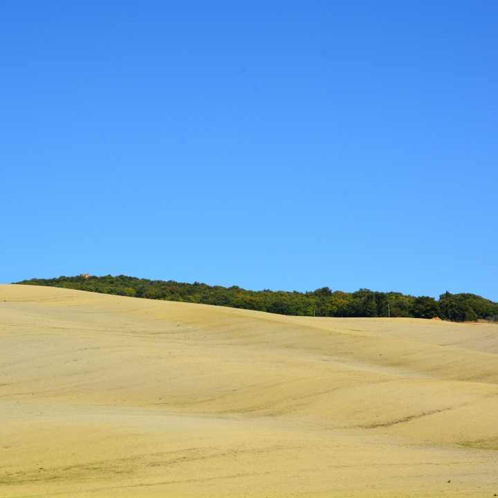 Val d'Orcia, waves in the desert