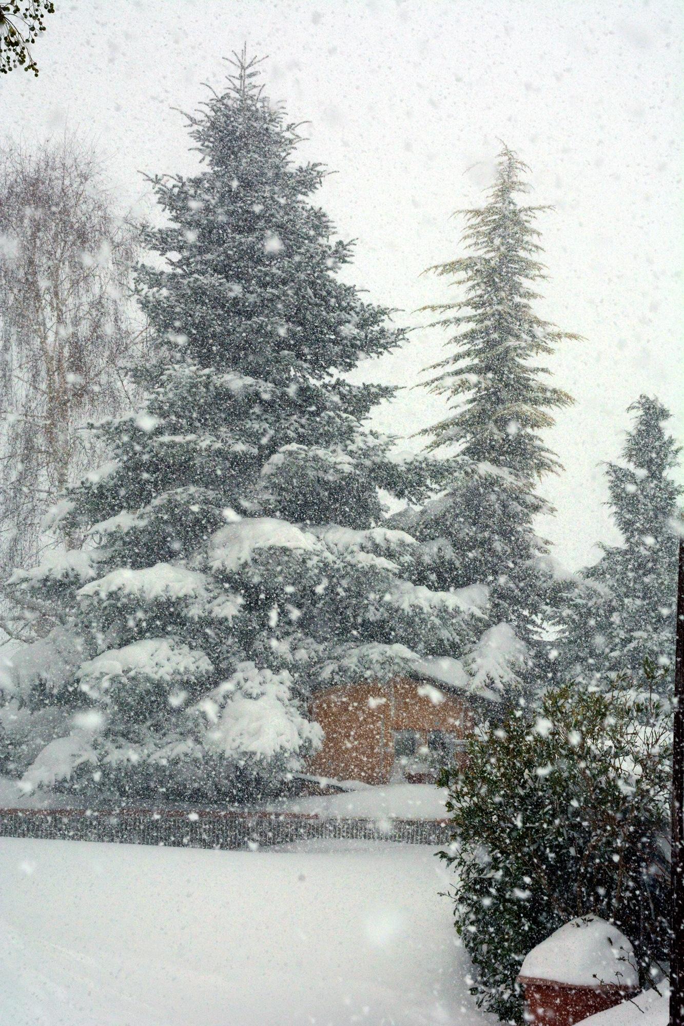 Agnone, my Snowland
