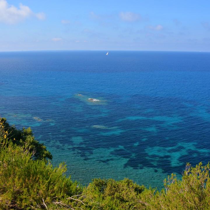 The blue sea of Pomonte