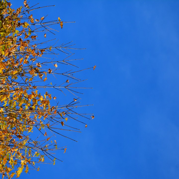 Autumn in Alto Molise
