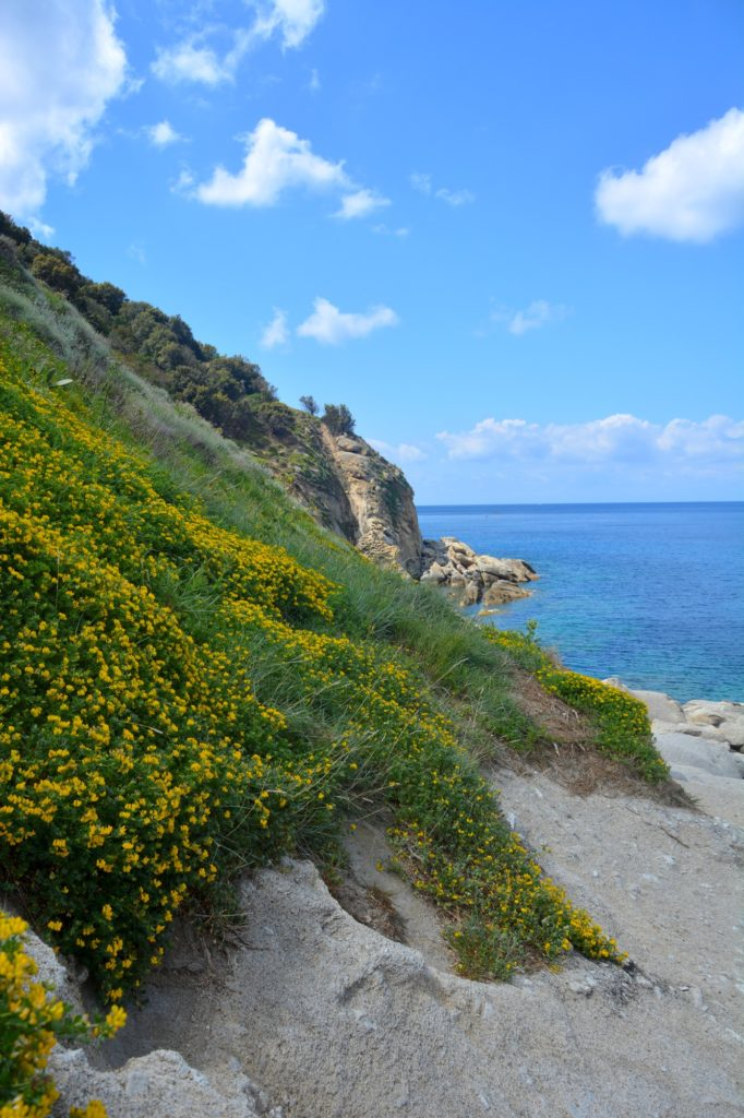 The wild side of Sant'Andrea