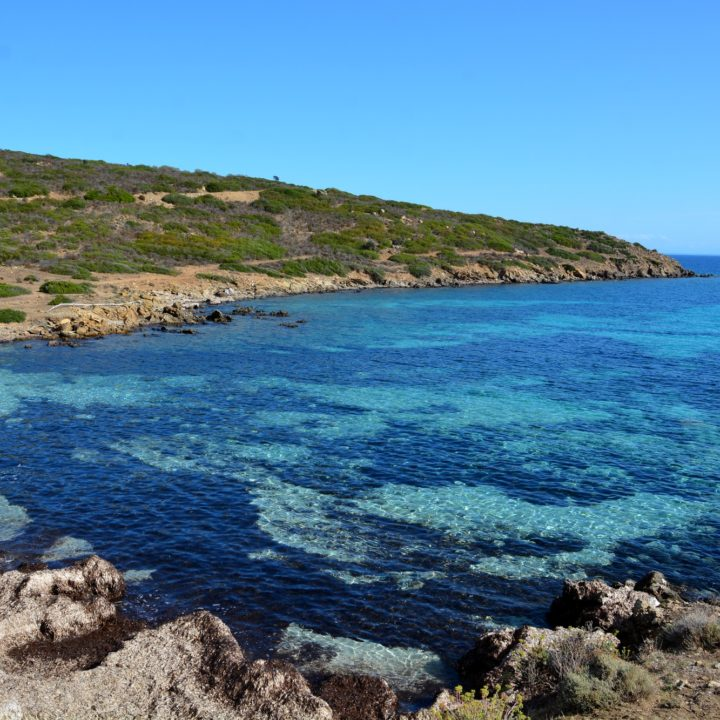Visiting the Island of Asinaria - part I