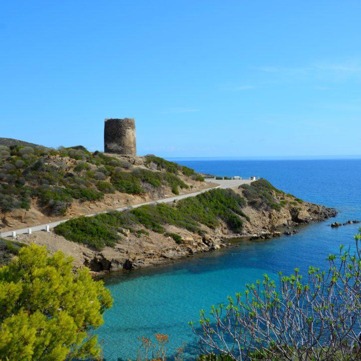 Visiting the Island of Asinara - part II