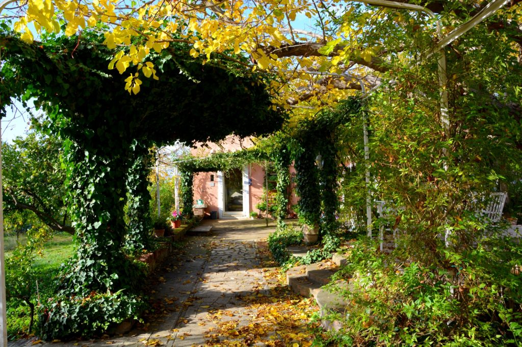 Autumn at Casale del Gelso