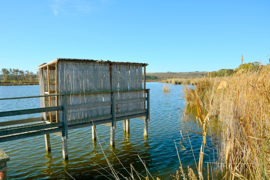 Platamona pond